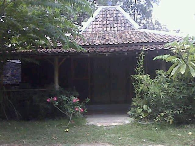 """K'ayoe"" Rumah Sewa Ethnic Concept"