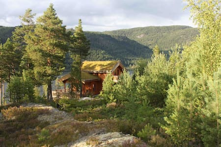 Superb cabin in sunny Telemark