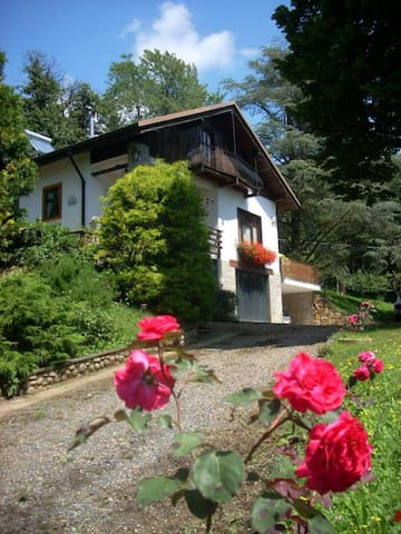 Stanza in bed&breakfast  - Coassolo Torinese - Bed & Breakfast