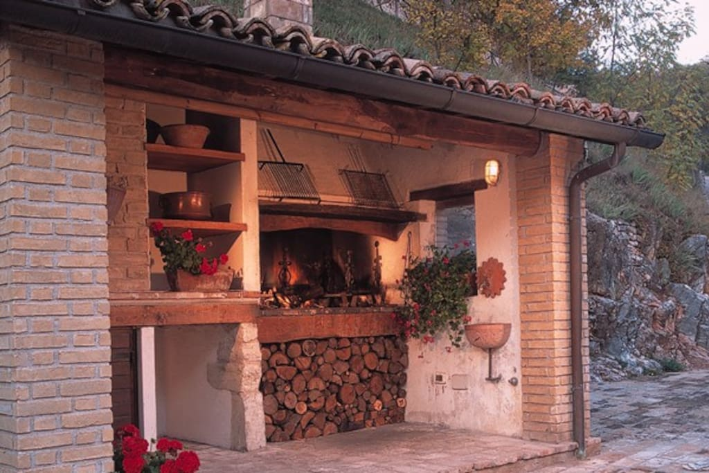 BBQ and wood burning oven