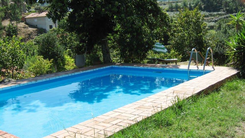 V6 Talas, Villa w/ pool - Fornos