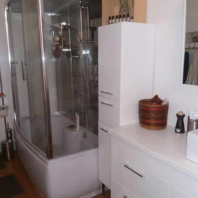 salle de bain 12m2