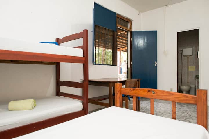 Room from 1 to 5 beds, Ssa Bahia