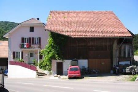 Gemütliches Studio in ruhigem Dorf - Böttstein