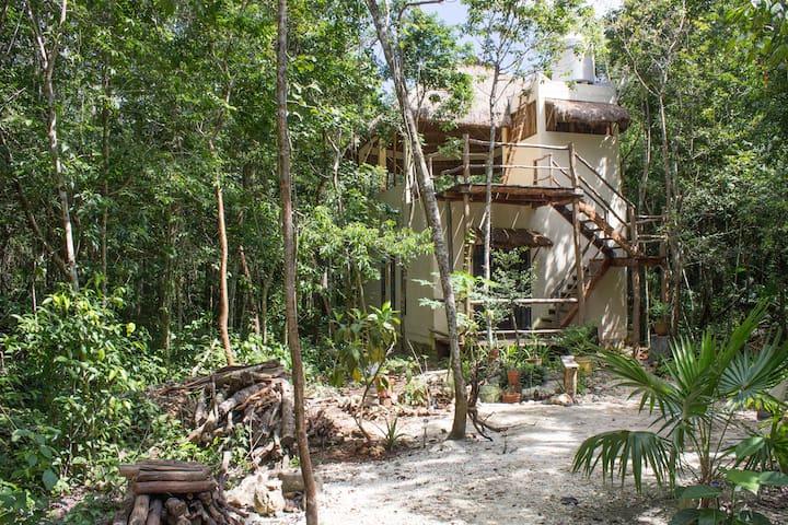 Private Home in the Jungle - Central Vallarta, QR, Mexico - House