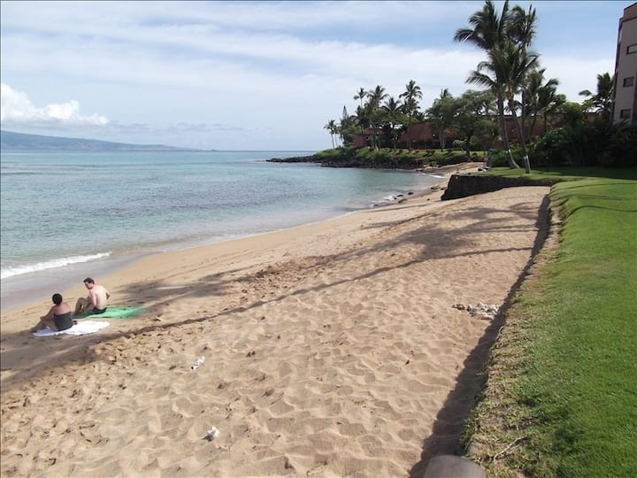 DIRECT Oceanfront sandy beach condo