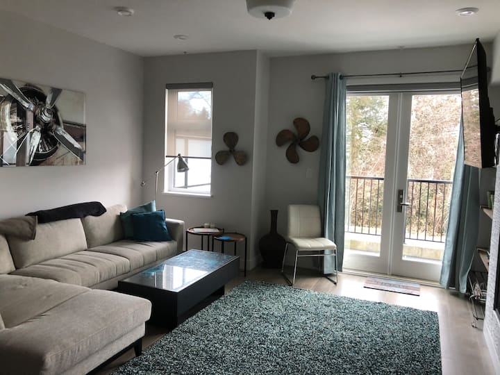 Squamish Newly Built modern townhouse