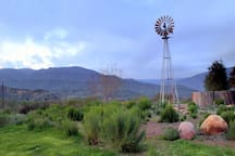 Located on a native plant farm, with beautiful pure drinking water that is pumped by this 90 year old working windmill. Note the California native chaparral demonstration garden around the windmill.