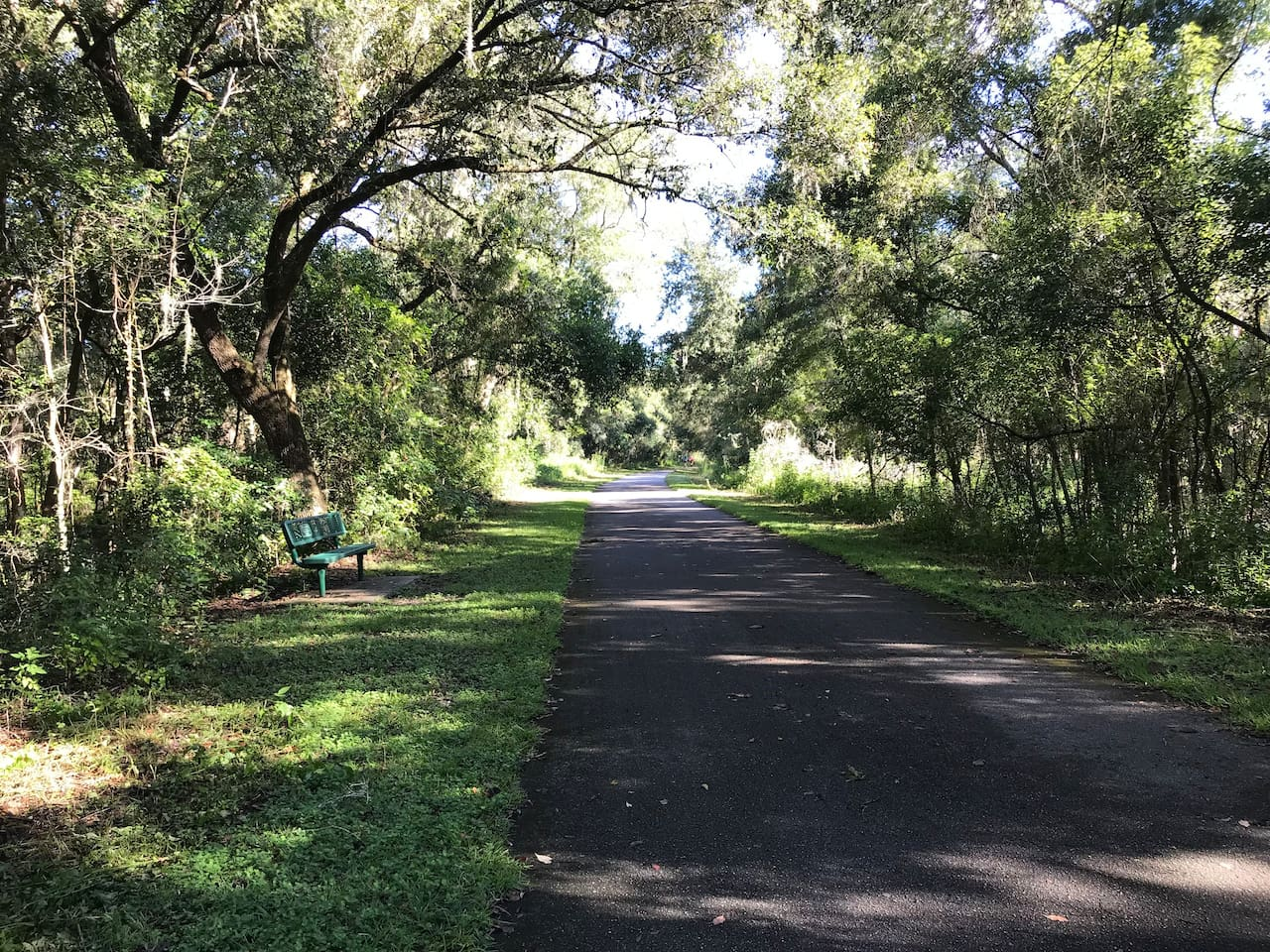 46 mile Trail: 1/4 mile from Cottage. Bikes, Horses and walking Trail! No motors allowed!