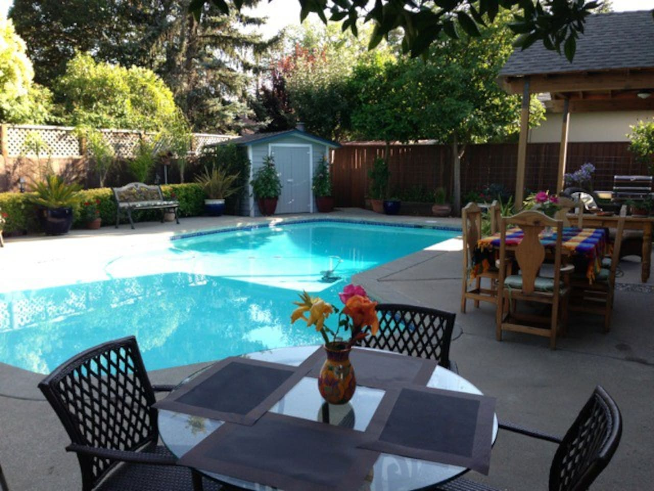 Beautiful pool and entertaining area