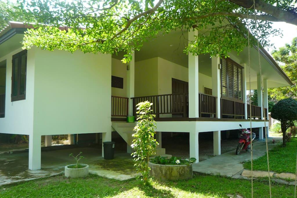 Exterior View Hibiscus