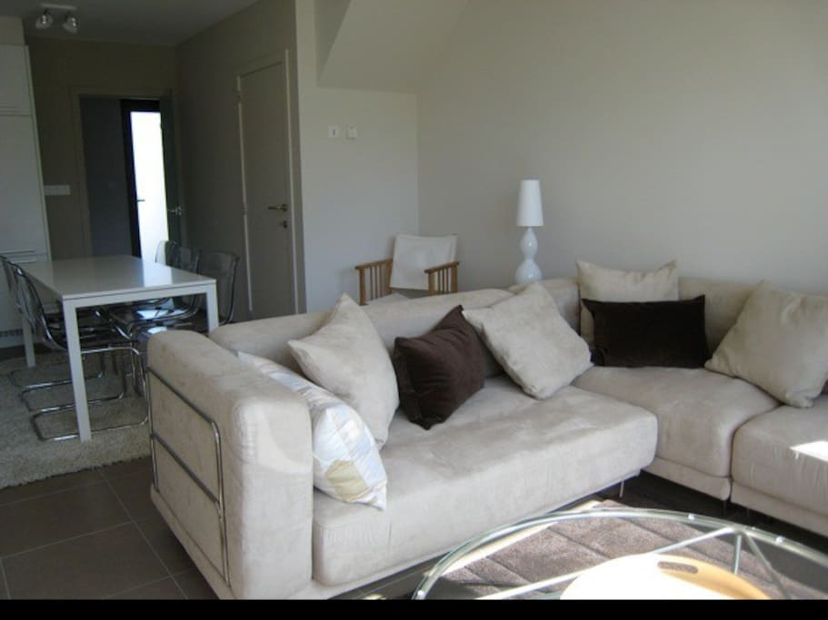 Focus on the living room with the dining table & kitchen (left of the table) in the background