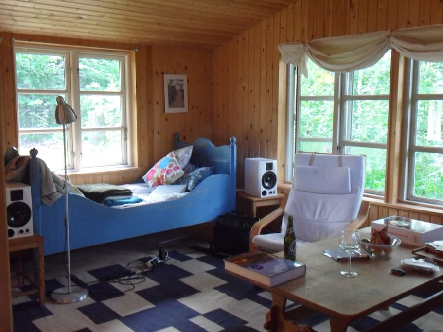 The blue bed in the living room