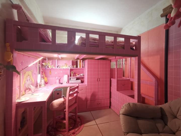 【粉色loft☁㏇㏇】可撸猫|/沙面岛/上下九步行街/永庆坊/西关大屋/荔湾湖公园/ins少女心