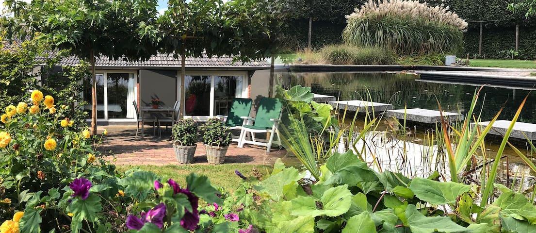Baarle-nassau , Gerenoveerde oude stal met zwembad