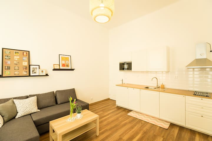 cozy design family private apartment (Sweet Praha) - Praha - Huoneisto