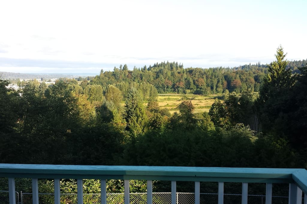 Lovely view across Woods Creek valley and the wooded ridge beyond.