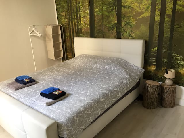 Double room appartment city center
