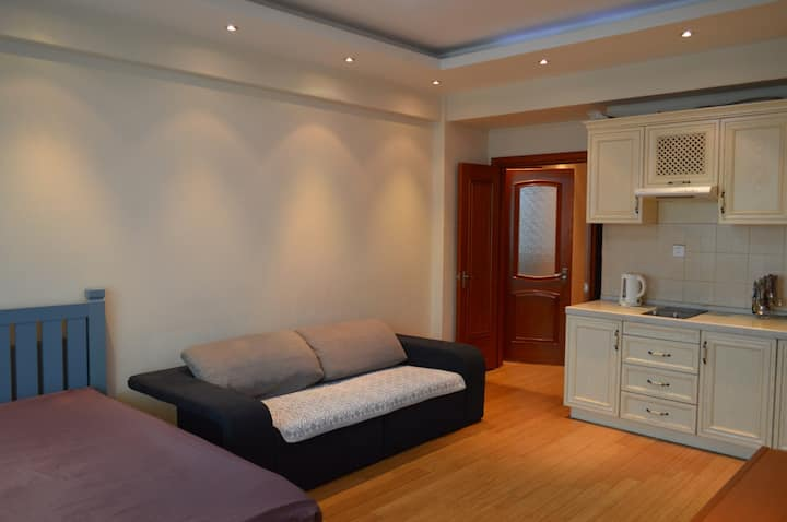 Fully furnished, cozy studio in center of UB