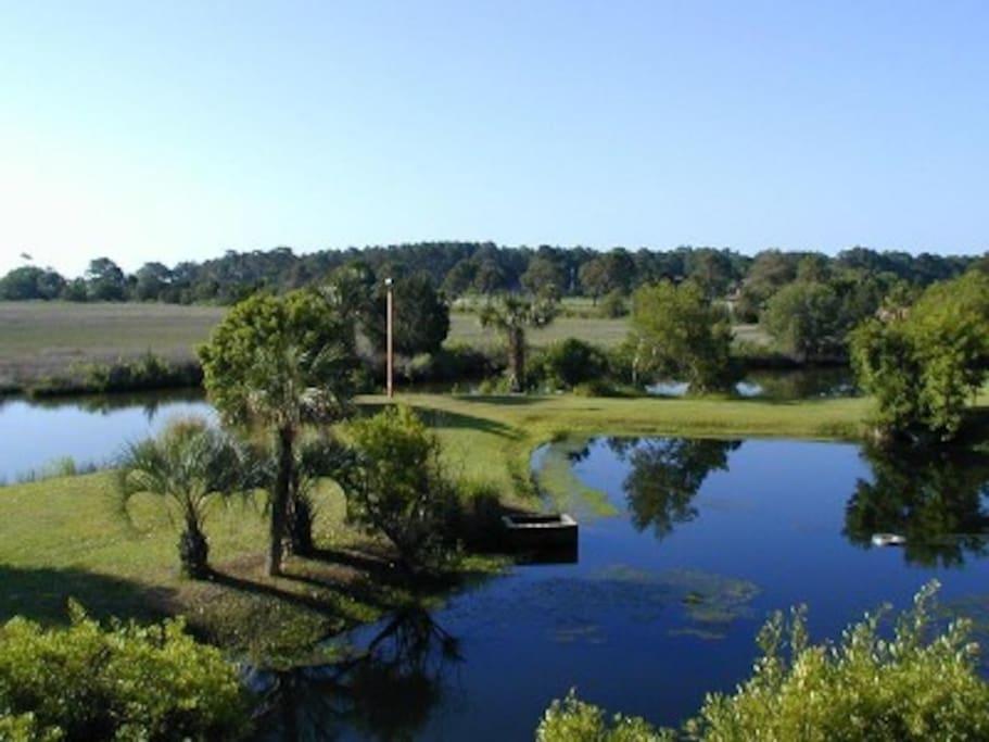 Beautiful lagoons surround the the resort