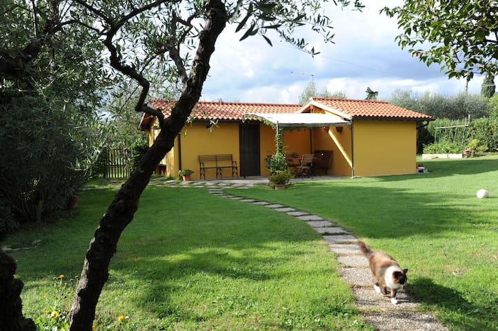 La Casina (in the green Tuscan) - Capannori - House