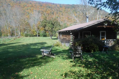 Catskill Cabins with Fireplace 2 br - Big Indian - Blockhütte