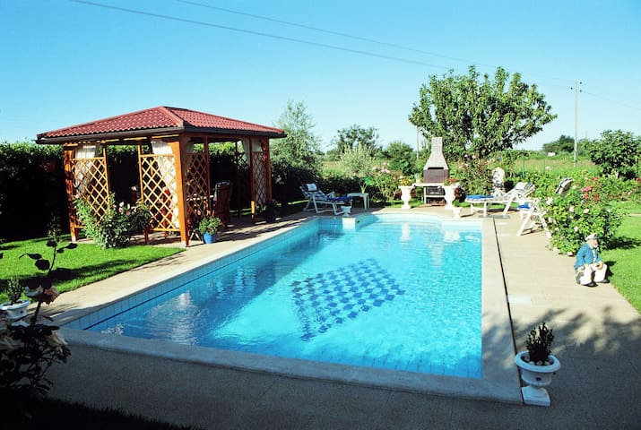 Villa Amedeo with pool & garden 6+2 - Finida - House