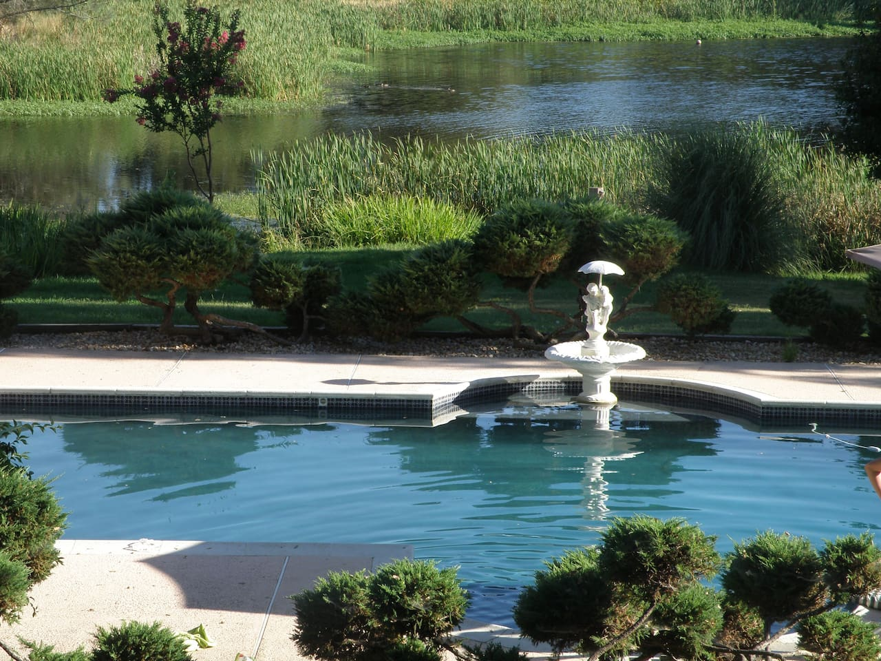 Access to pool, pond, and horseshoe pits.