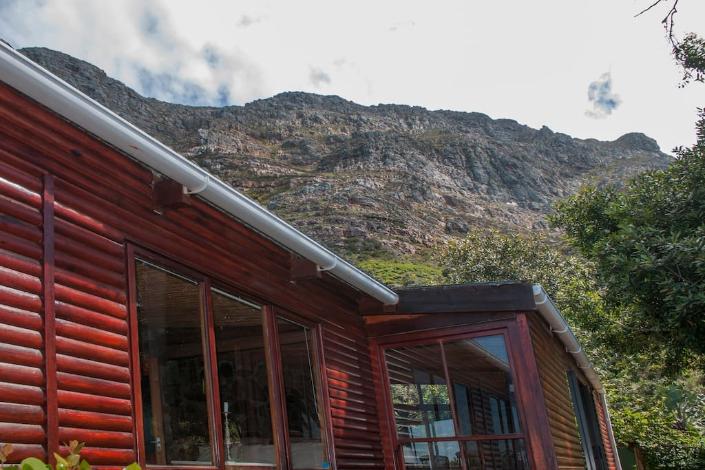 Nestled beneath the towering beauty of Table Mountain National Park
