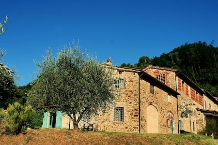 Frantoio: remodeled ancient olive oil mill