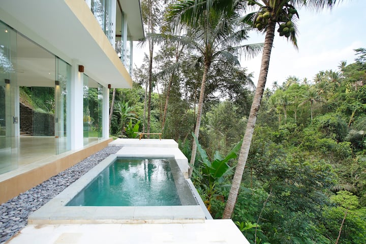 Lovely Jungle View Villa