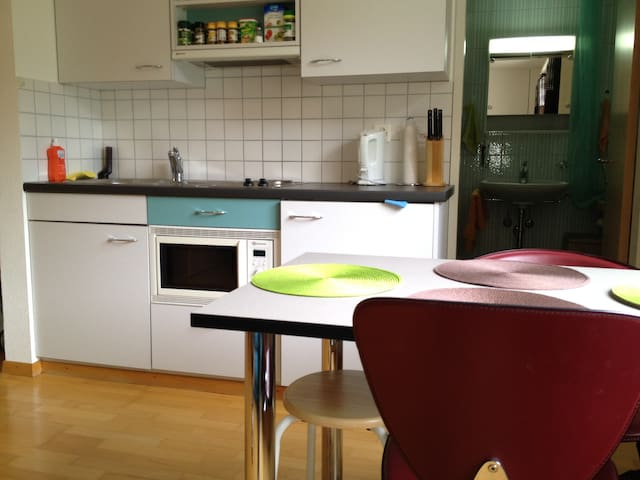 Nice studio all furnished to rent - Leukerbad - Lakás