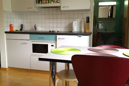 Nice studio all furnished to rent - Leukerbad