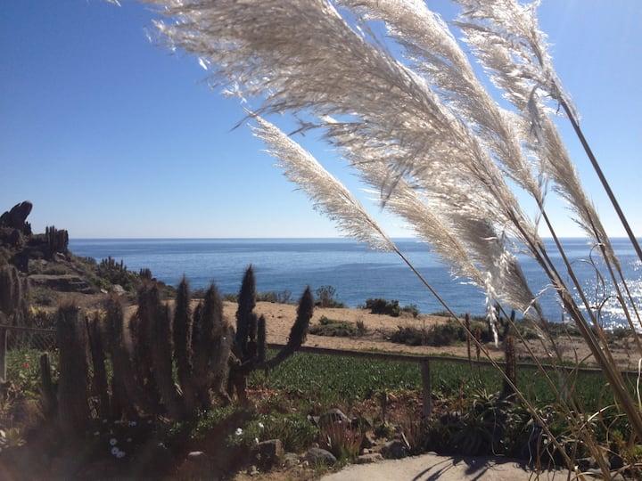Flores y Mar