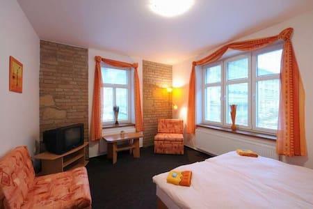 samostatný a vybavený pokoj pro 1 osobu - Pilsen