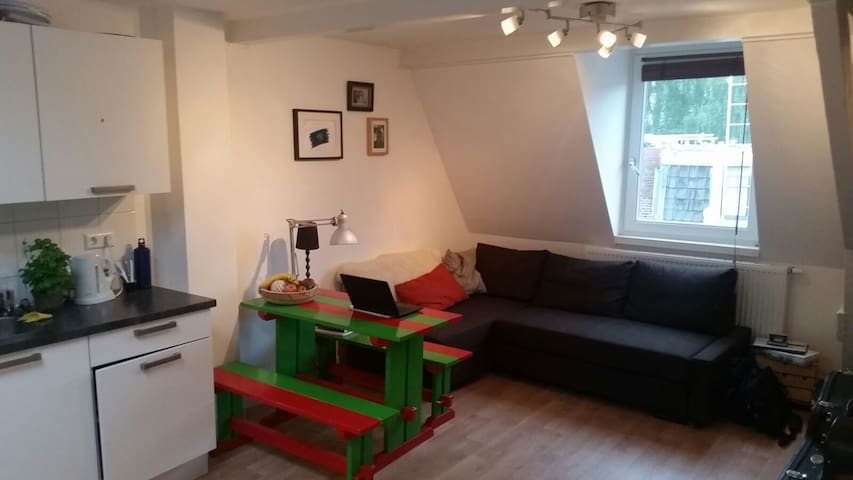 Cosy apartment 10 min walk from city center - ユトレヒト