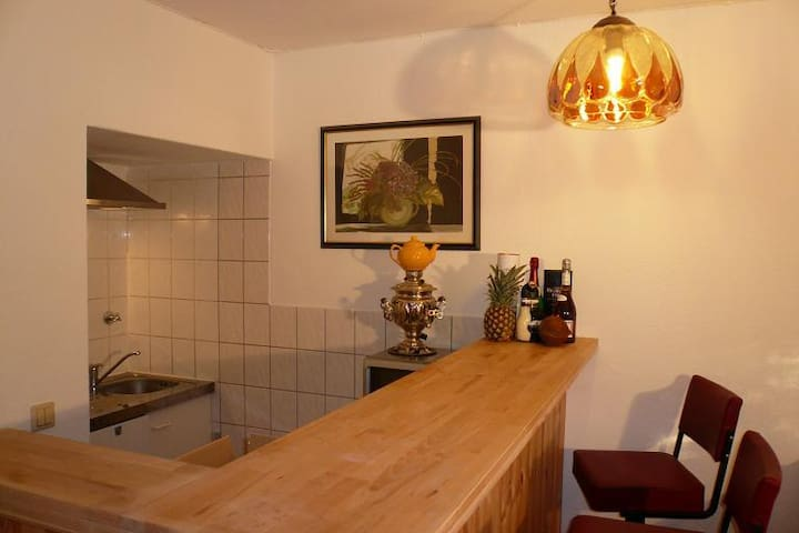 Very Comfortable 2-room apartment - Offenbach