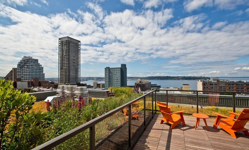 Rooftop Deck - with stunning views of the Water and Downtown. You will love Lounging here!
