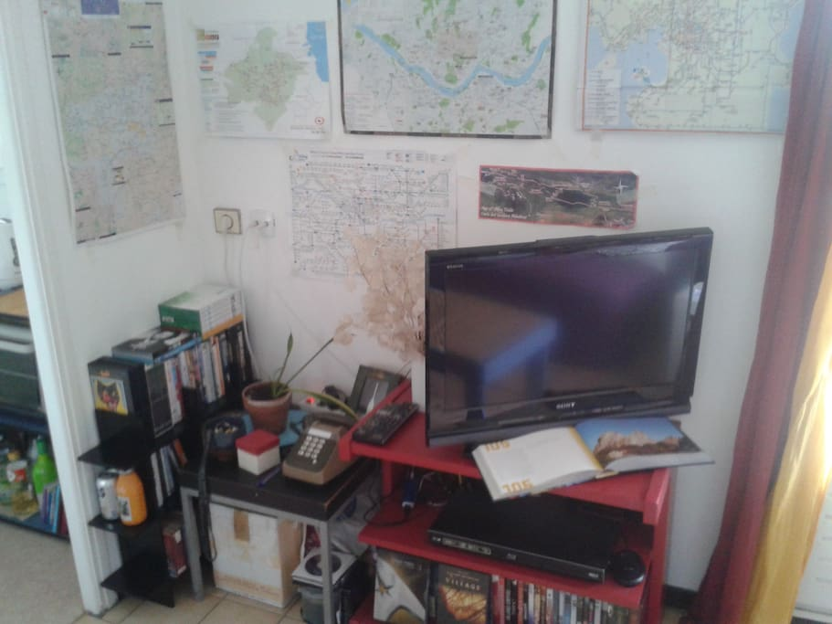 Le coin télé avec un lecteur bluray et ma collection de dvd à disposition