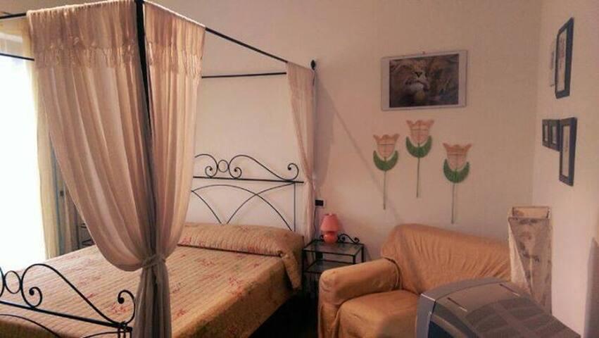 Villa Di Palma Guest House - Dunarobba