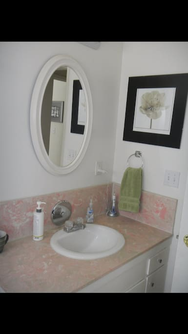 Clean bathroom with unique pink countertop.