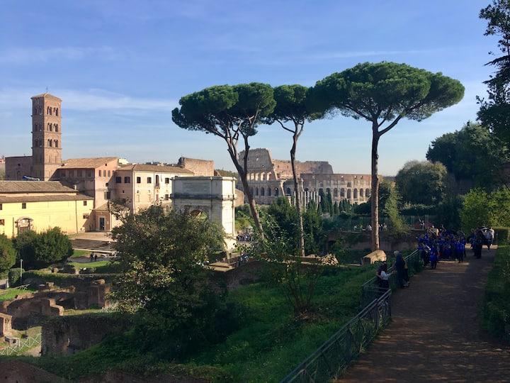 Blick vom Forum Romanum