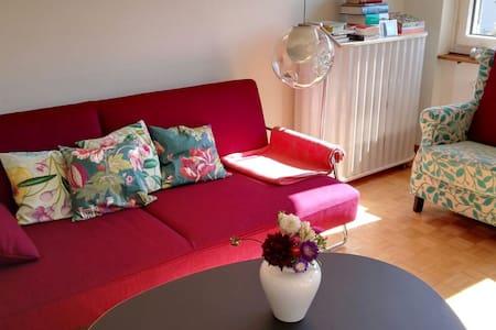 Cozy room in beautiful flat - Zürich - Apartment
