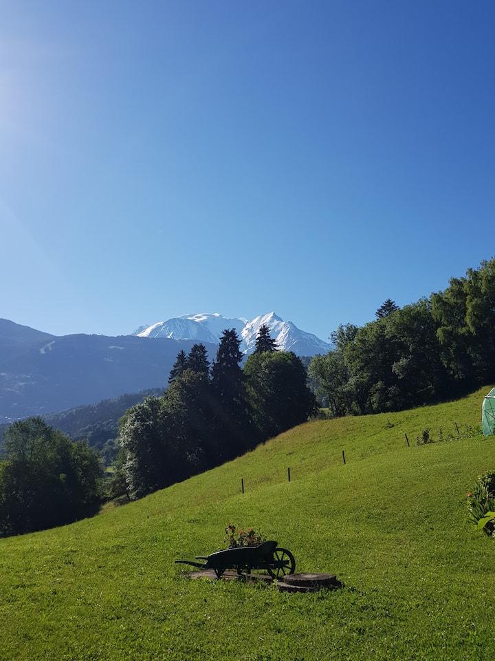 Appartement dans chalet, terrasse  vue Mont Blanc