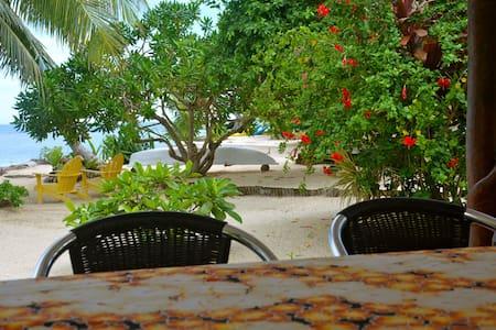 Moorea Nice Beachfront House.Dolphins Whales - 'Āfareaitu - Dům
