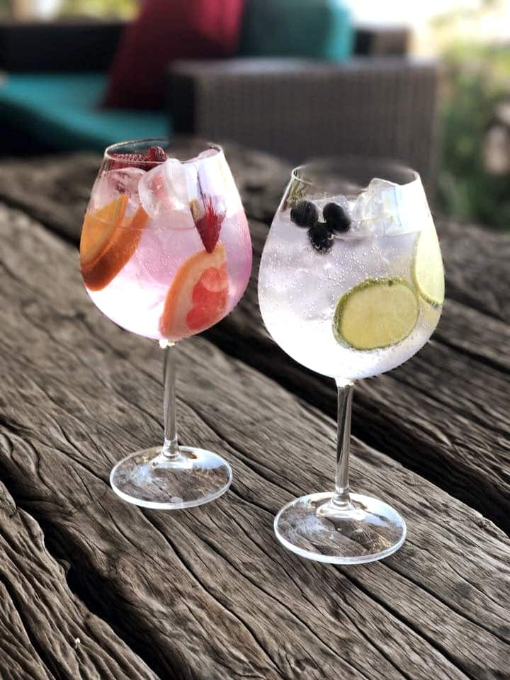 Two of our Gin Cocktails