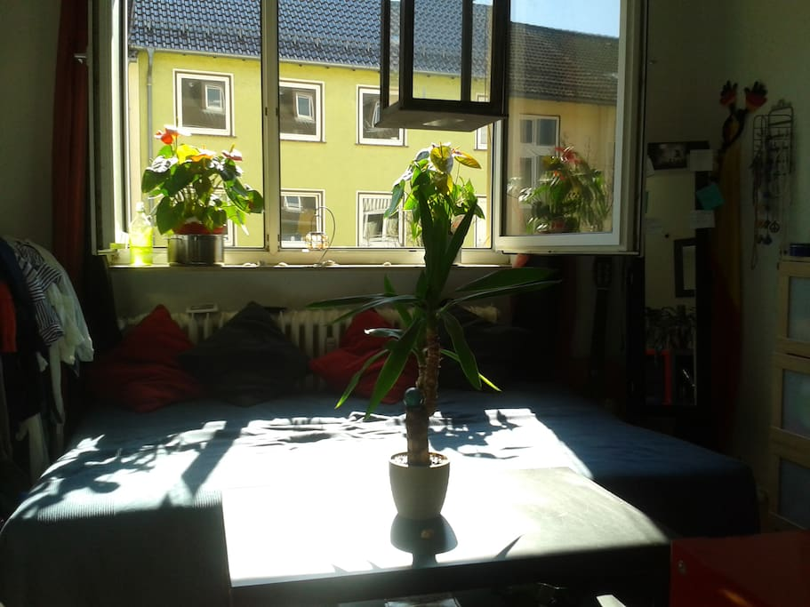 zimmer in zentraler lage w hrend documenta wohnungen zur miete in kassel hessen deutschland. Black Bedroom Furniture Sets. Home Design Ideas