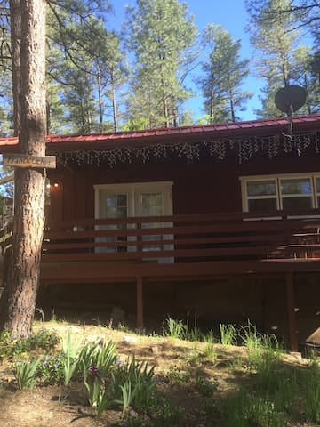 5 Bears Cabin - Ruidoso - Appartement