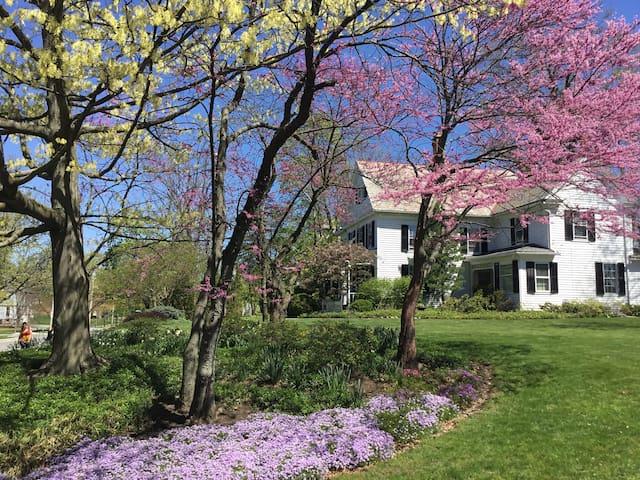 Ivy Tree Inn-Cottage Rm-Queen bed - Oberlin - Bed & Breakfast