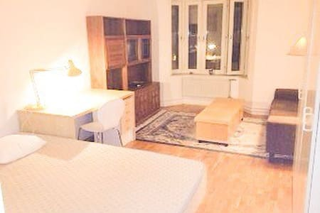HUGE room, very heart of Stockholm! - Stockholm - Apartment